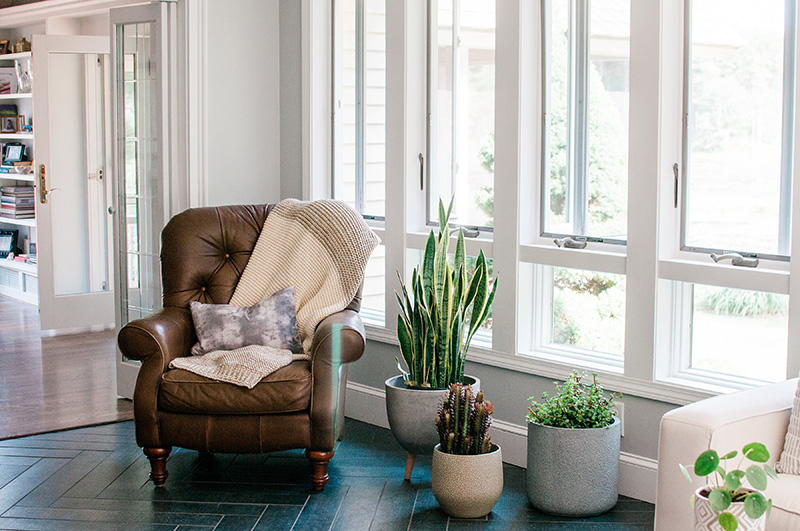 Remodeled windows with chair and plants